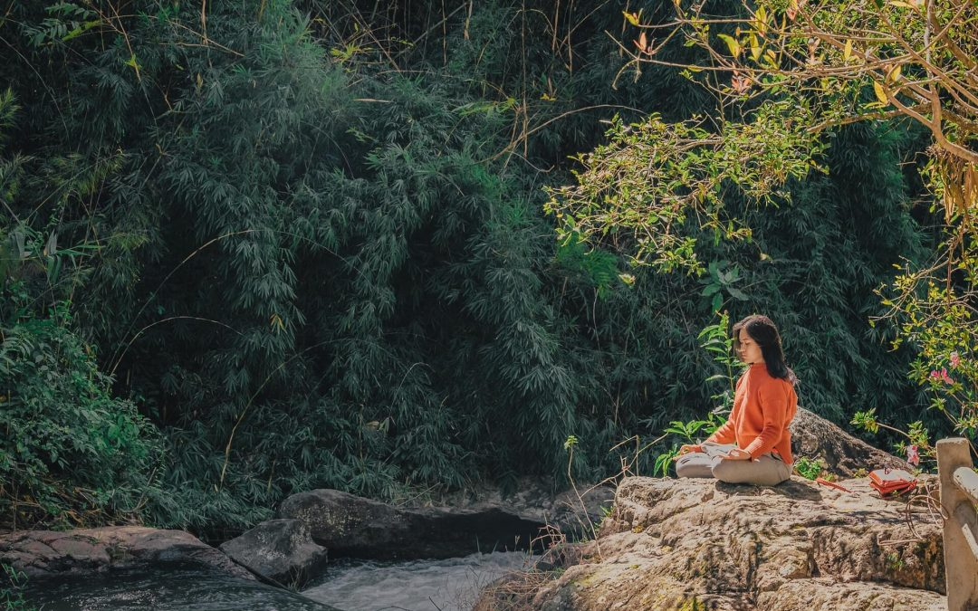 Meditation for Vitality